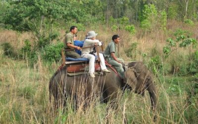 Chitwan Jungle Adventures
