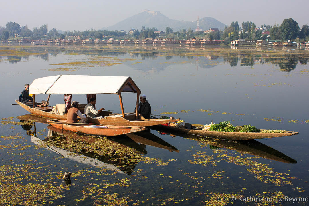 Nagin Lake Srinagar Kashmir India 32-2
