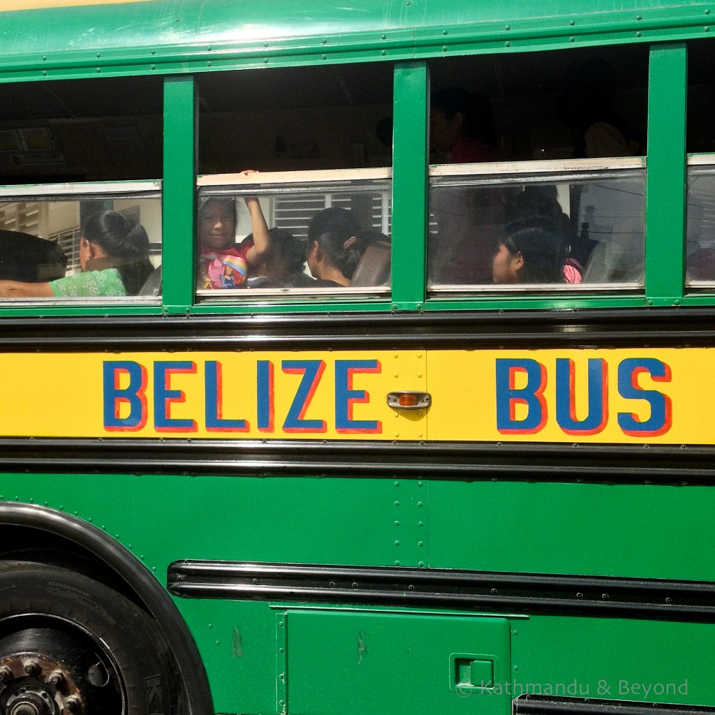 Chicken bus Belize