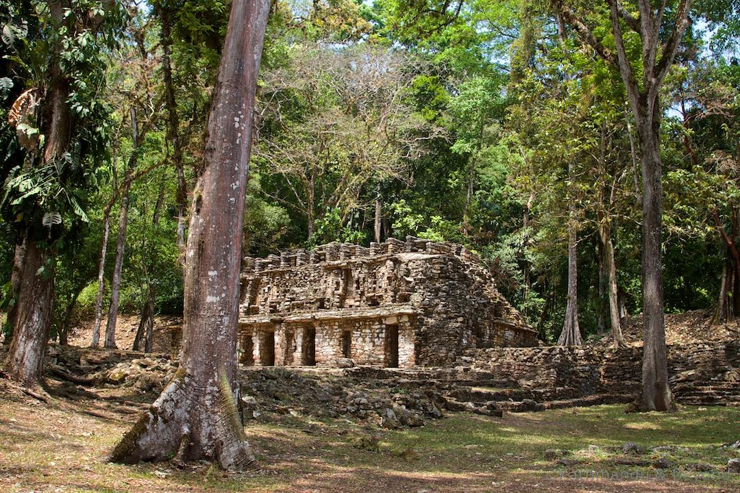 El Laberinto Yaxchilán Mexico (1)