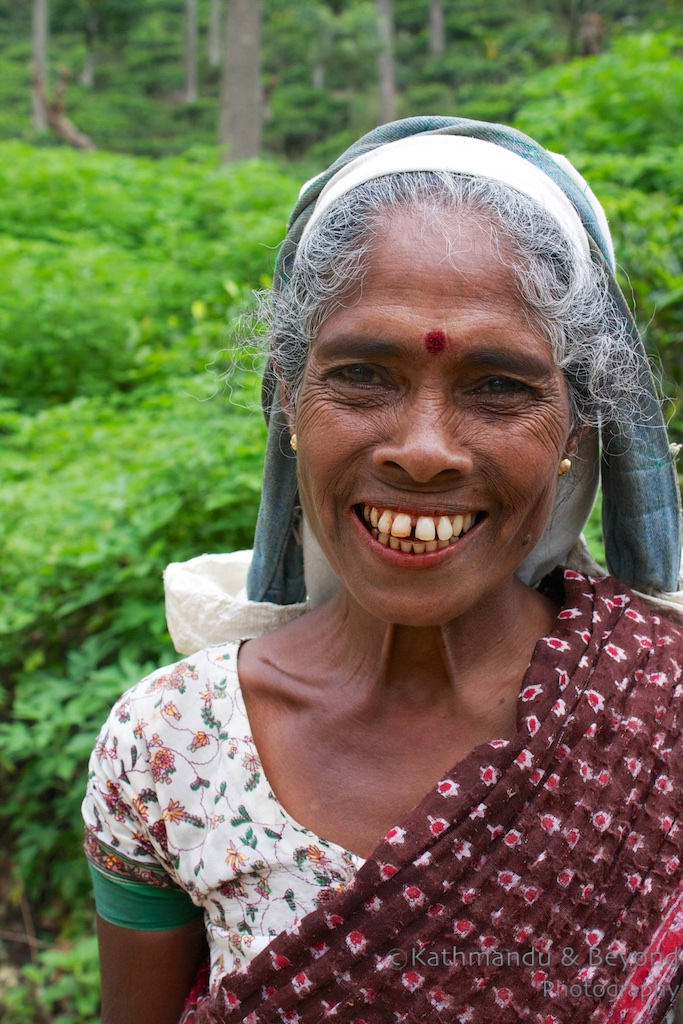 Dambatenne Tea Estate Haputale Sri Lanka   Fourteen countries, fourteen smiles