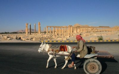 Friday Flashback | Palmyra in pre-civil-war Syria