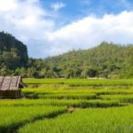 Five Places in Northern Thailand Not to Miss