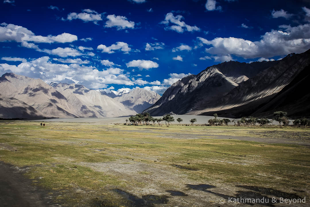 Nubra Valley Ladakh India 30-Edit 2