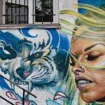 Street Art in Veliko Tarnovo, Bulgaria