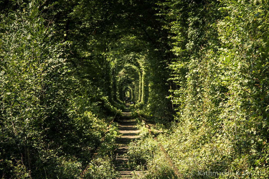 Tunnel of Love Klevan Ukraine | Where to break the journey between Kiev and Lviv