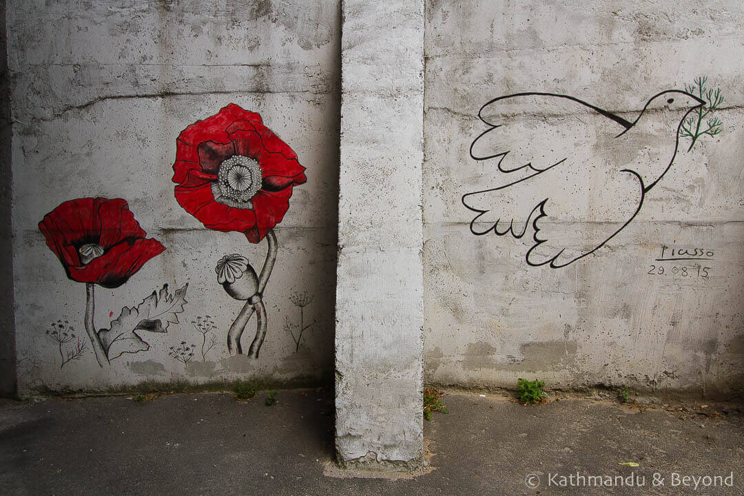 Poppy and Dove | Street Art in Kiev Ukraine-4