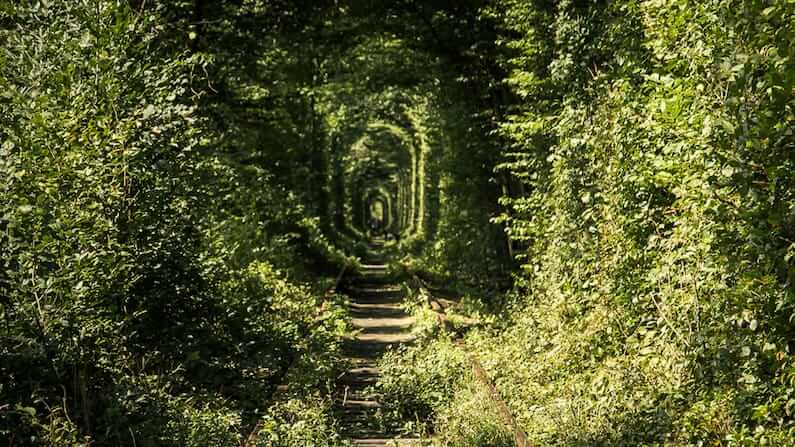 Visiting the Tunnel of Love, Ukraine
