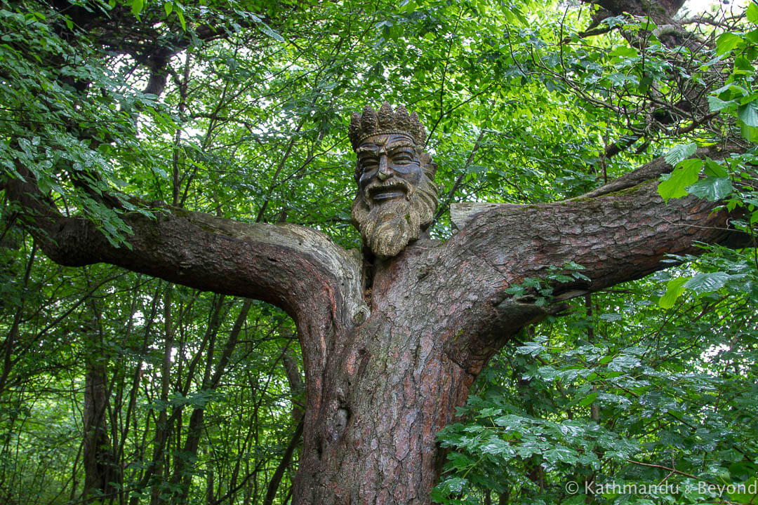 King of the Woods Dilijan Armenia-2