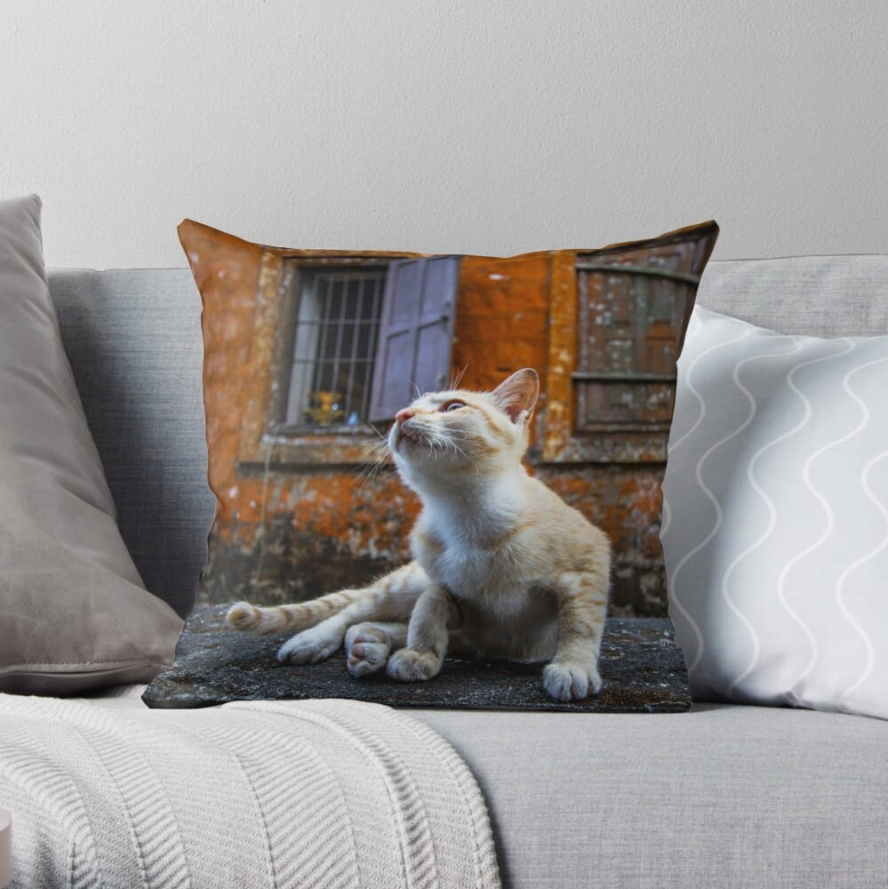 Bokor cat throw pillow (Cambodia travel blog)